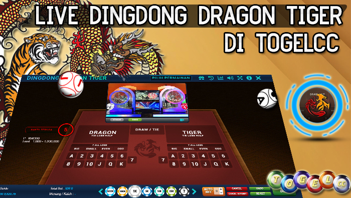 Live Dingdong Dragon Tiger